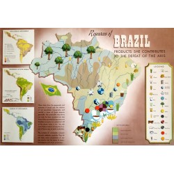 1940s WWII Map of Brazil - Products she contributes to the defeat of the Axis - Original Vintage Poster