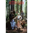 "1983 Star Wars ""Return of the Jedi"" Forest Moon of Endor - Original Vintage Poster"